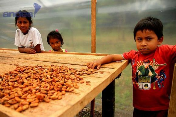 Chocolat d'Equateur 3