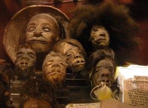 Collection de têtes réduites