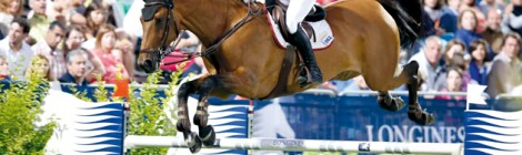 Are you a self-confessed equestrian geek? Quiz from Horse and Hound