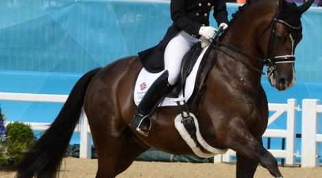 Equine elegance: challenging the established dressage outfit