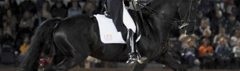 Making music for dressage