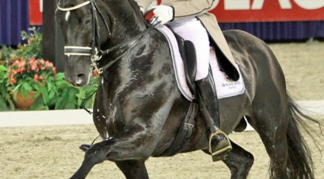 Freestyle dressage from Moorlands Totilas and Edward Gal