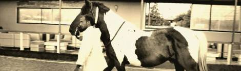 Egvus: My home equestrian club