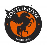 Equilibrium Logo_Página_07