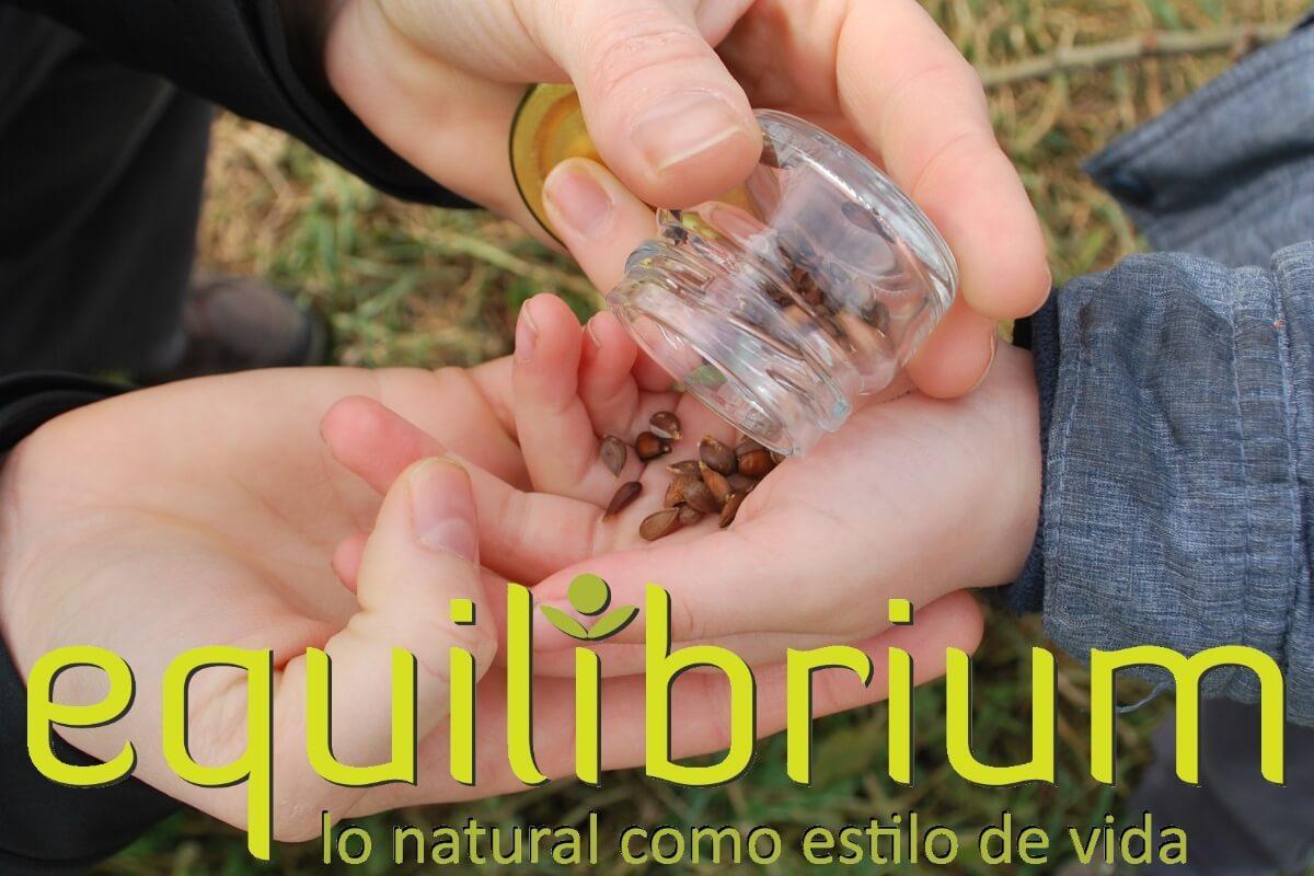 Equilibrium, Lo Natural como estilo de vida