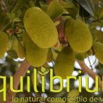 jaca o jackfruit