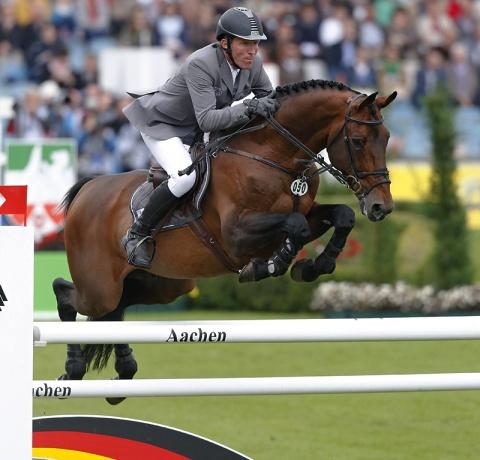 stallone Chaman da Baloubet du Rouet di Ludger Beerbaum salto ostacoli Equine Evolution stalloni tedeschi