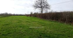 Normandy – Pays d'Auge – grassland property 23 ha