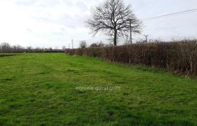 Normandy – Pays d'Auge – grassland property 23 ha