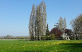 Normandy – Crèvecoeur en Auge area –  5.38 hectares