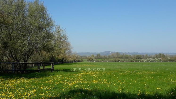 Normandie – région Crèvecoeur en Auge – Herbages : 5.38 hectares