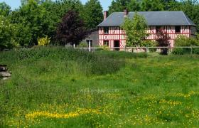 Normandy – Pays d'Auge area – Property