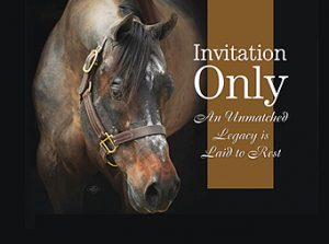 invitation only an unmatched legacy is laid to rest equine chronicle