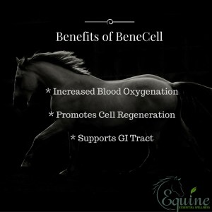 Benefits of BeneCell -