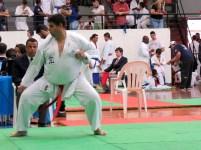 fotos-campeonato-brasileiro-karatedo-goju-ryu-ikga-2018-osasco-sao-paulo-kumite-127