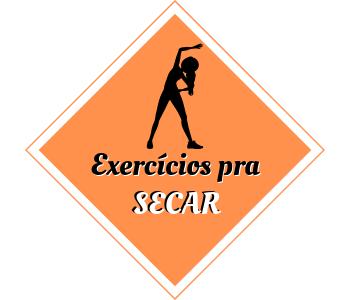 exercicios FIT