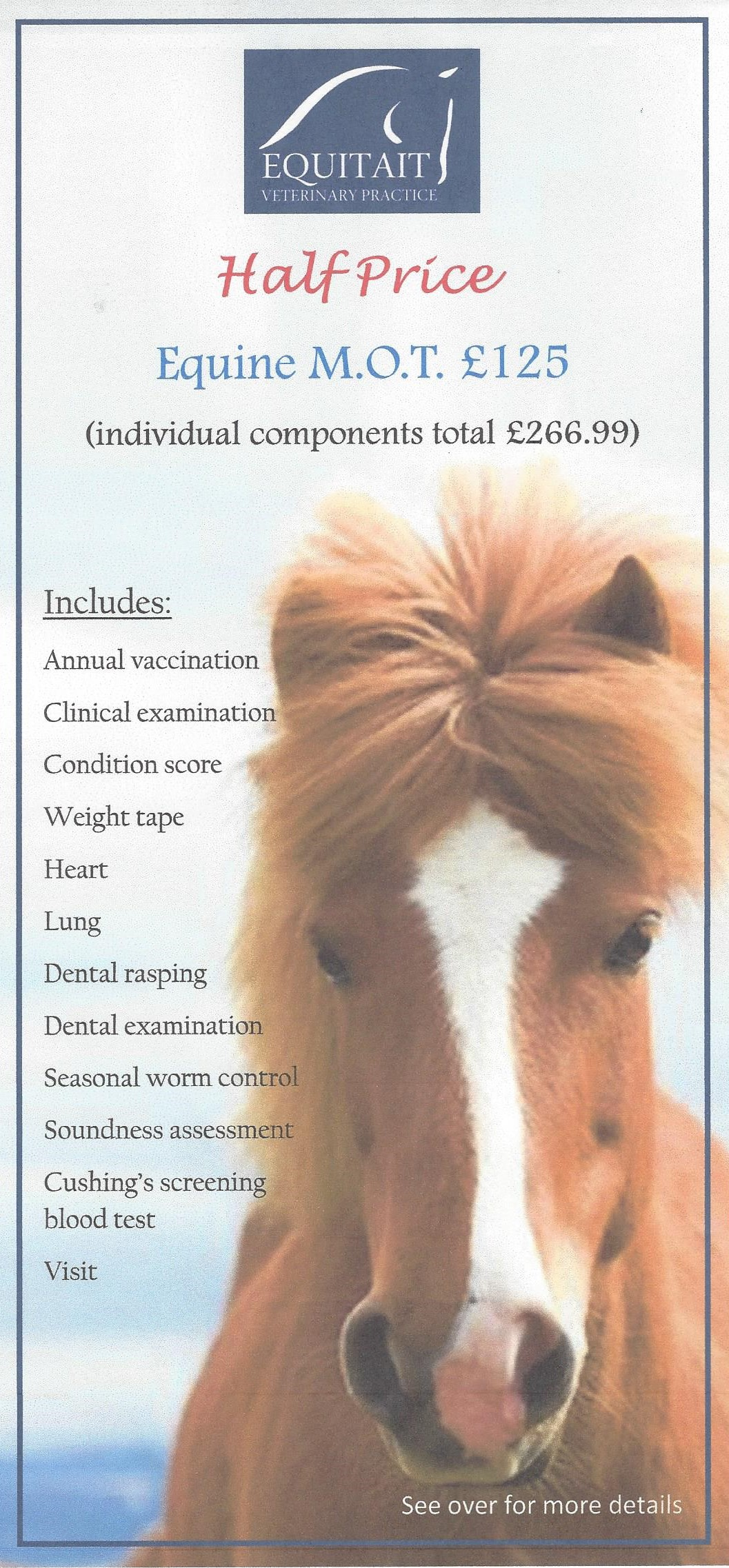 New for 2018 – Equine M.O.T. Half Price Offer!