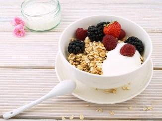 ricetta dello yogurt biologico denso e cremoso