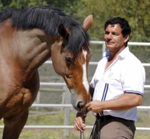Didier-Viricel,-equitationfusionnee.fr