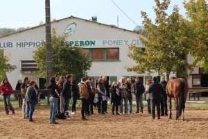 L'institut équitation fusionnée