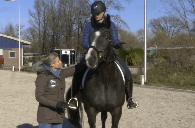 Compassionate Training for Today's Sport Horse - Topic 8