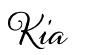 Questa immagine ha l'attributo alt vuoto; il nome del file è kia.jpg