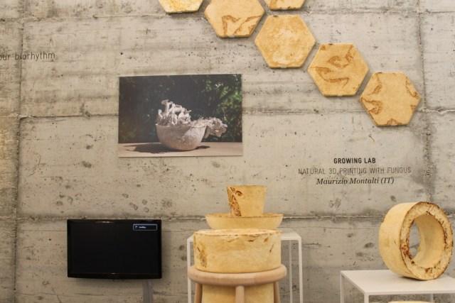 Growing Lab Maurizio Montalti
