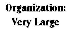 Very Large Organization