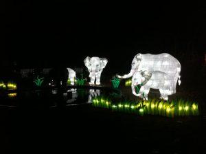 img_7617 China Lights Zoo — OFF — - IMG 7617 300x224 - China Lights Zoo — OFF —