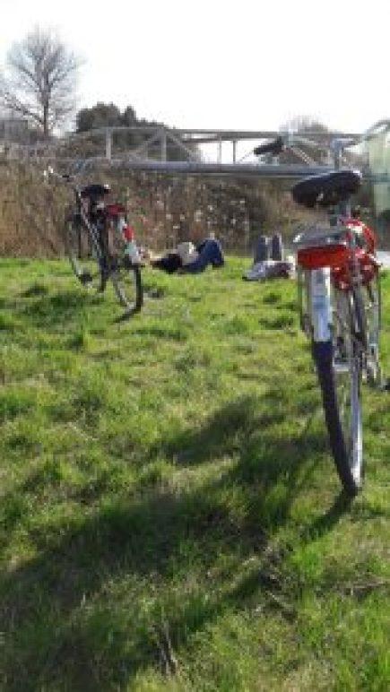 bicicleteando suave - WhatsApp Image 2017 04 05 at 23 - Bicicleteando suave