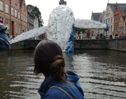 El arte de #Brujas, una lucha contra la contaminación
