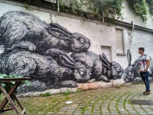 Roa grafiti Gante, hogar de grafiteros - Roa grafiti 300x225 - Gante, hogar de grafiteros