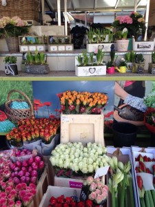 Mercado de las flores ¡Vamos al mercado! - IMG 0006 225x300 - ¡Vamos al mercado!