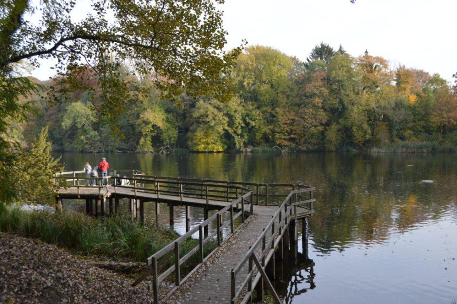 Las orillas del lago del Parc de Tervuren son el rincón perfecto para leer un libro, relajarse y descansar.  seis parques para tomar el sol en bruselas - DSC 0267 1024x681 - Seis parques para tomar el sol en Bruselas