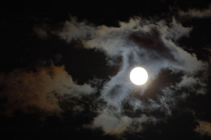Noche blanca de luna
