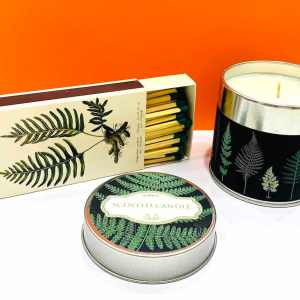 Candela di soia - foresta - Erbainfusa | Erboristeria Erbainfusa Como | Shop Online