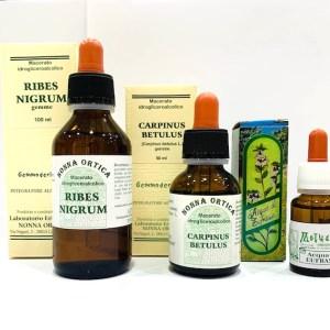 Kit allergia - rinite sinusite - collirio - Erbainfusa | Erboristeria Erbainfusa Como | Shop Online