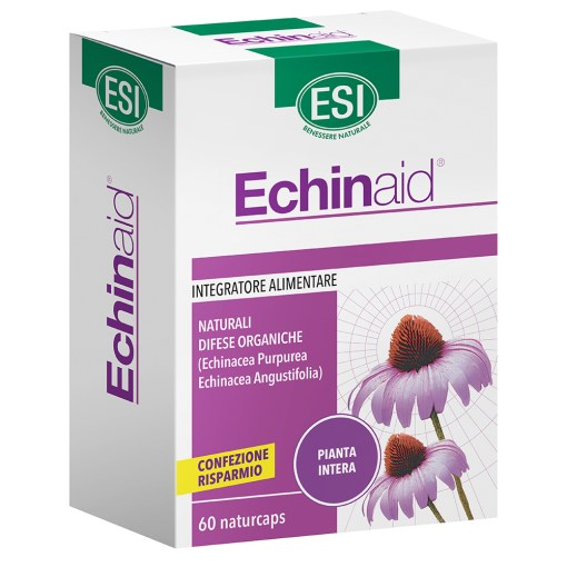 Echinaid 60 naturcaps