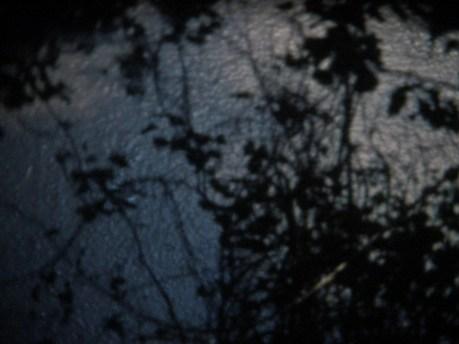 Jarrett Hayman. Soft, Dewy Morning (Reel/Life/Rushes: No.1) (2014)