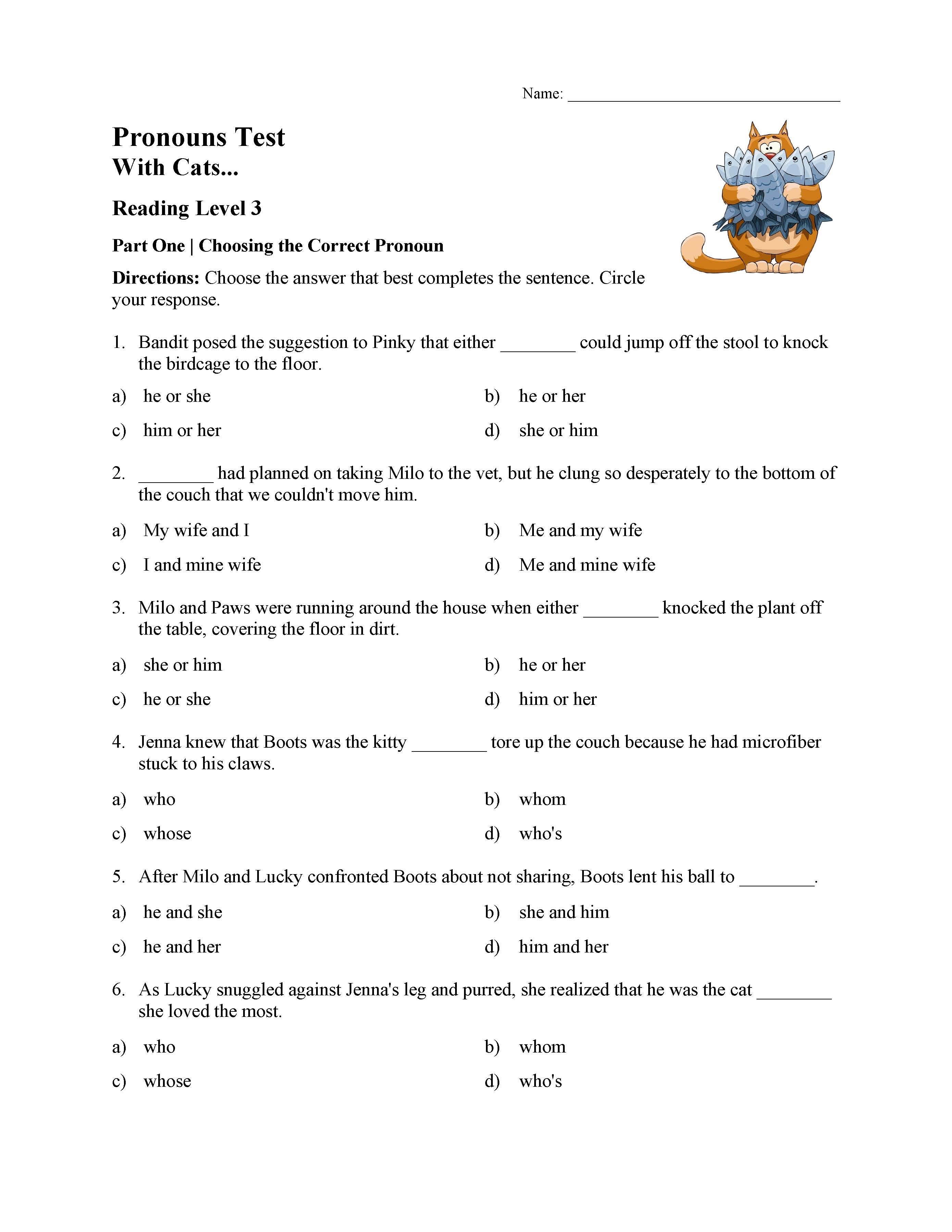 Pronouns Test With Cats