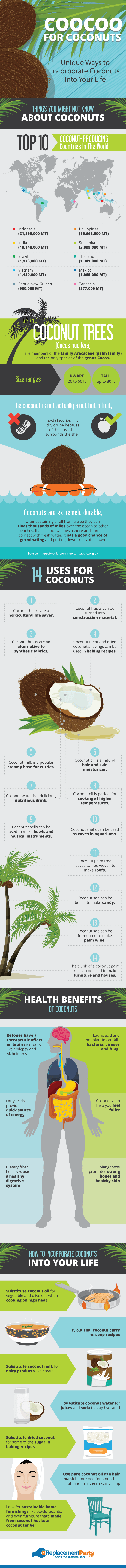 Ways to incorporate Coconuts into your life [Infographic] | ecogreenlove