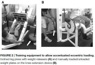 Eccentric strength training builds more strength than regular strength training does