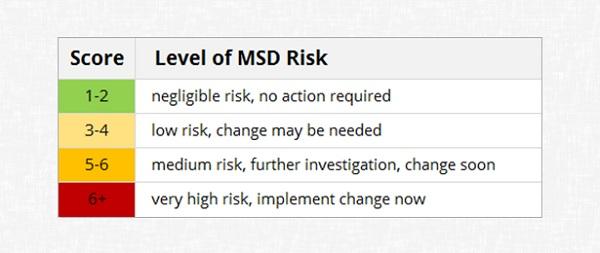 RULA Risk Scale