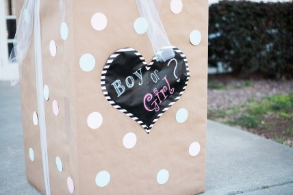 Charlotte NC Event Photographer|Charlotte NC Gender Reveal Photography