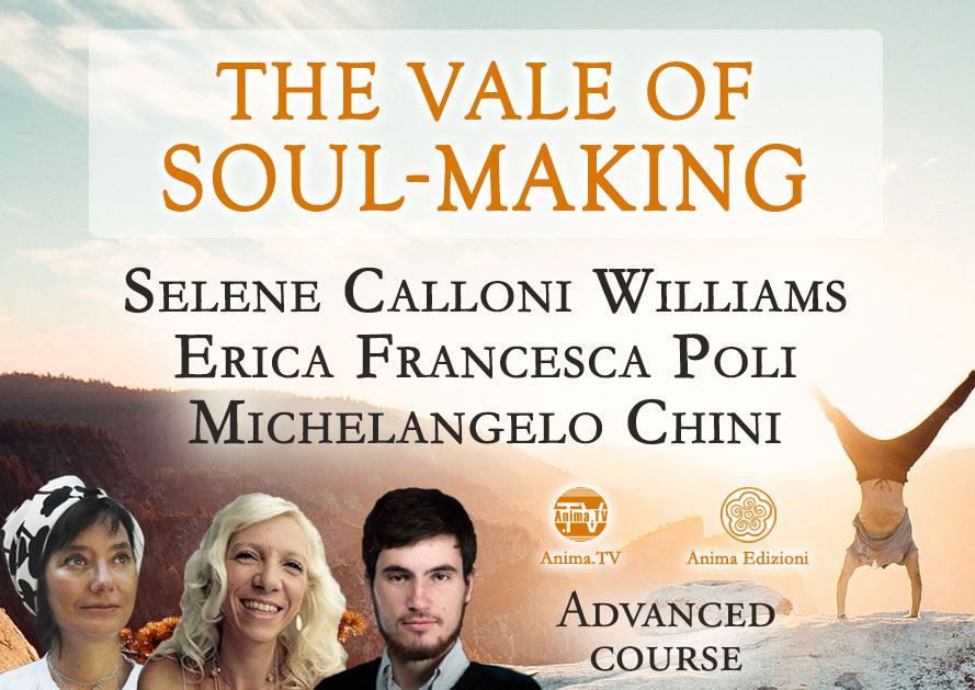 The vale of soul-making (English version)