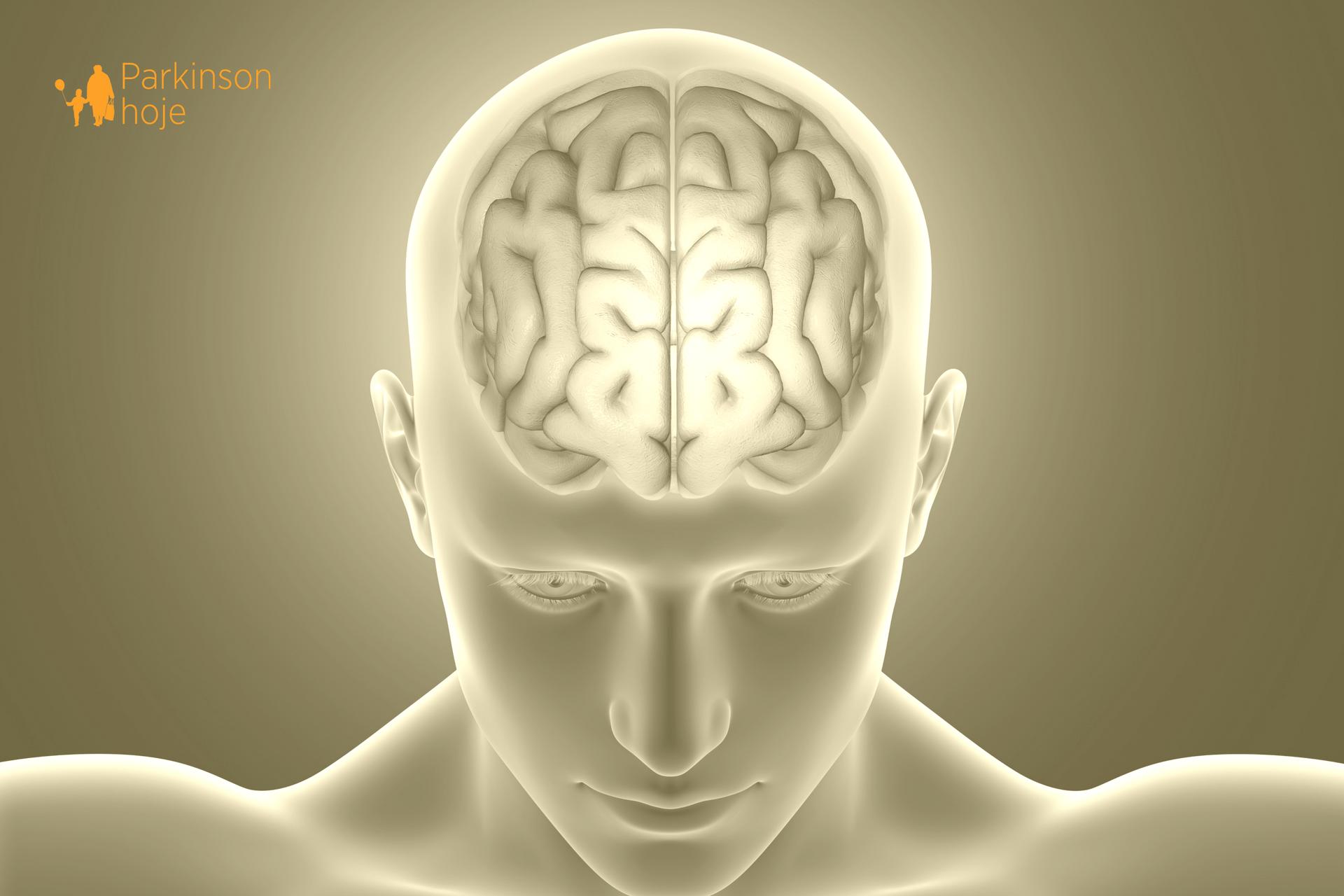 nova droga para impedir a progressão da doença de Parkinson