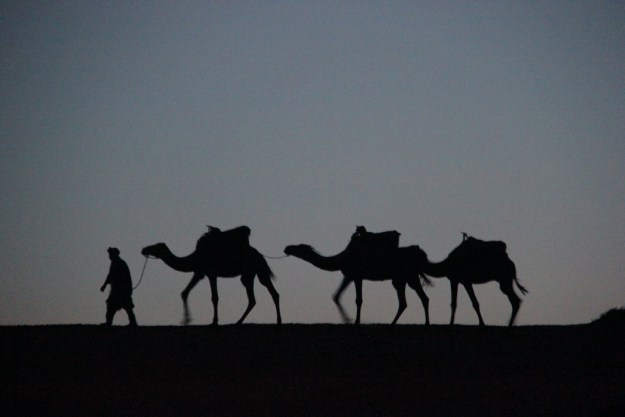 It's actually quite difficult to take photos from the back of a camel, so this is from after we arrived at our camp.