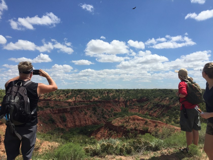 LOVE this shot of the three of them watching the bird flying high above the canyon.