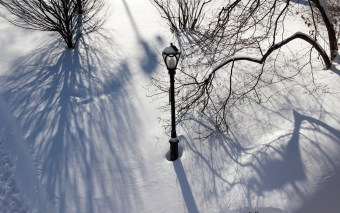 Lamp Post & Shadows, Central Park