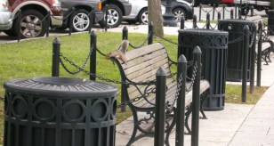 Squirrel Resting Near the White House